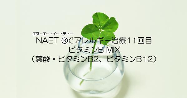 アレルギー治療NAET11回目:ビタミンB MIX(葉酸・ビタミンB2・B12)施術に行ってきた